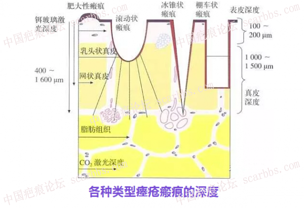 微信图片_20210120134057_副本.png