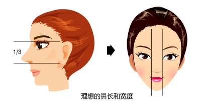对于鼻中隔软骨在鼻尖整形术中的应用情况